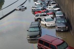 flooding-cars-in TX (1)