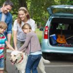 Tres divertidas ideas para un verano en familia