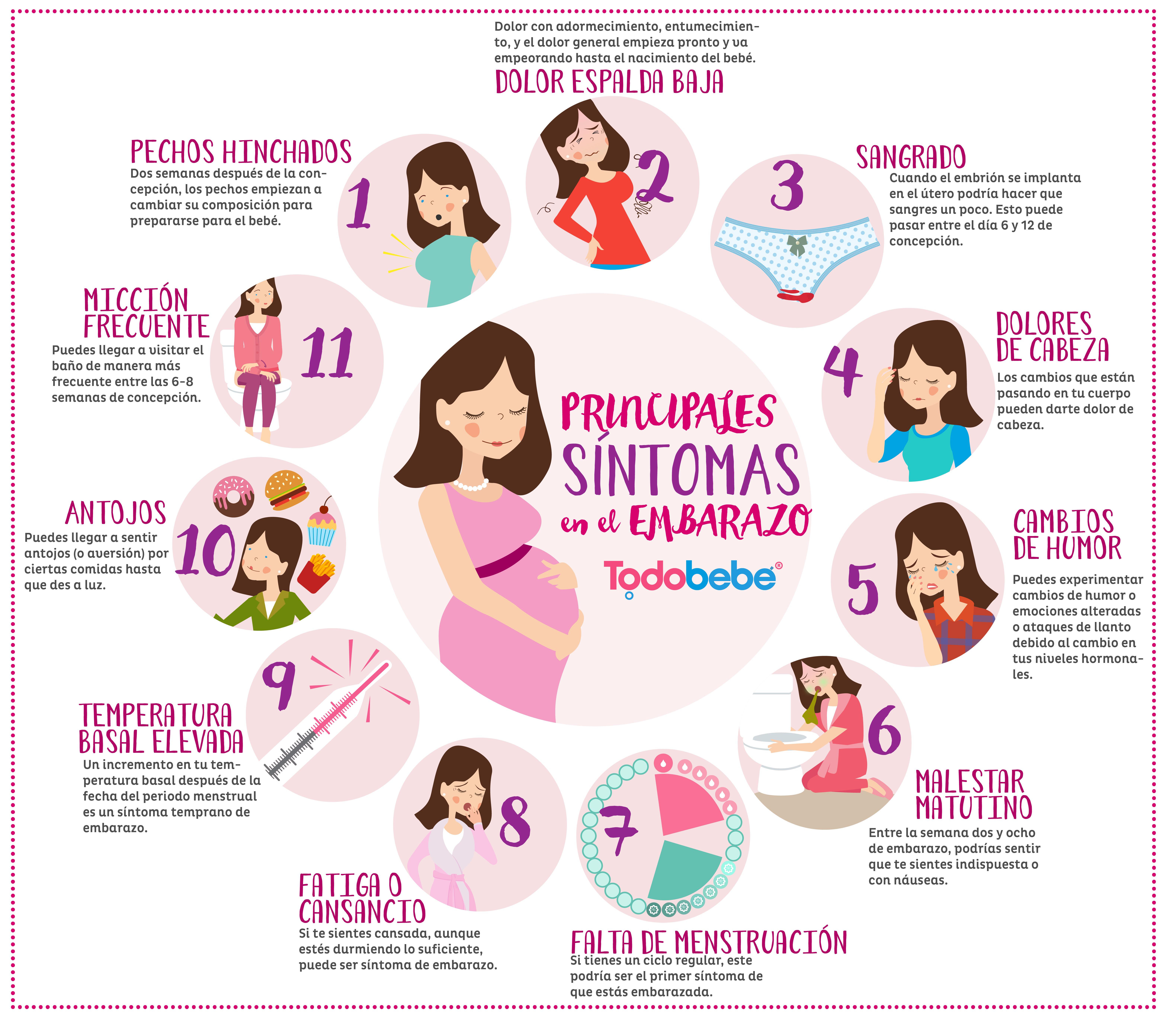 Sintomas embarazo - Primer mes de embarazo sintomas ...