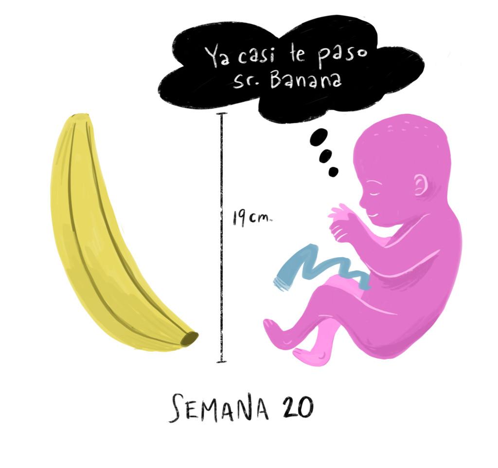 Tu bebé se estira