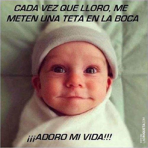 adoro-vida--153541033
