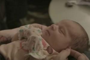 VIDEO: adopción sorpresa que estremece al mundo