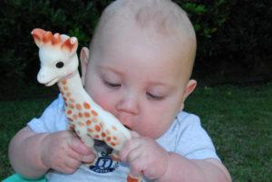 """Advertencia: moho dentro de juguete para dentición """"Sophie the Giraffe """""""