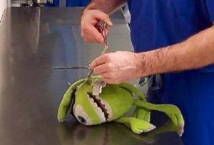 Operó a muñeco de peluche para reanimar a su pequeño paciente