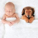 Así es como una mascota puede beneficiar la salud del bebé