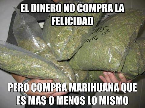 marihuana8