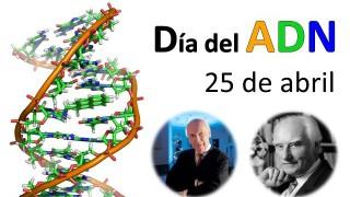 DIA ADN2