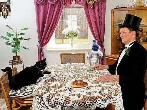 se casa con su gato3