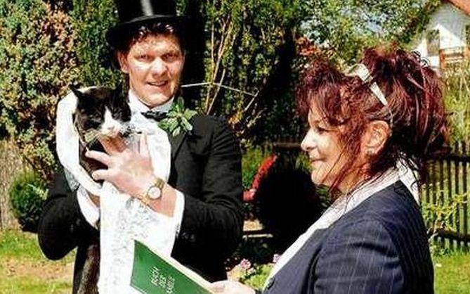 se casa con gato