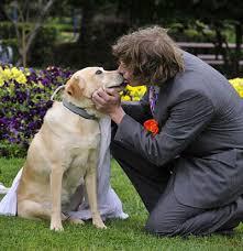 casado con perro